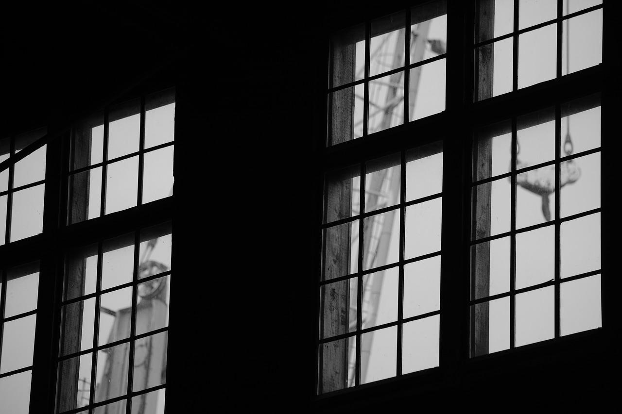 Fenêtres en alu : pourquoi aller vers un professionnel ?